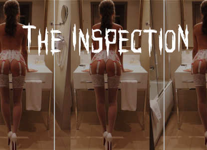 003_inspection